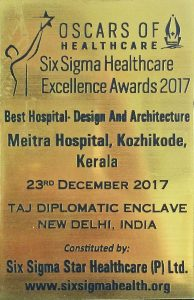 Six Sigma Award 2017 for Meitra Hospital
