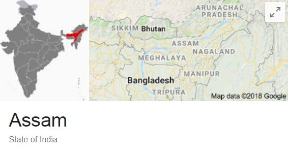 TAHPI assam india 19 new hospitals